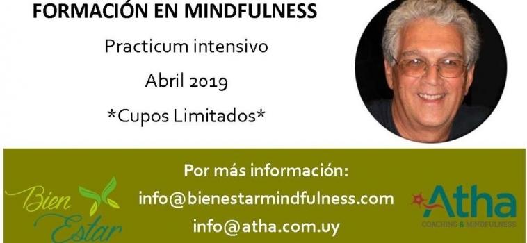 Formación en Mindfulness 2019